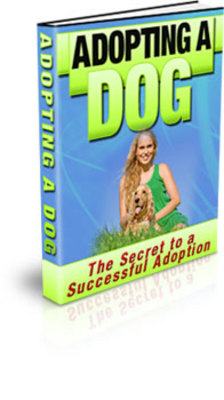 Product picture Discover The Secrets To Successfully Adopting A Dog!