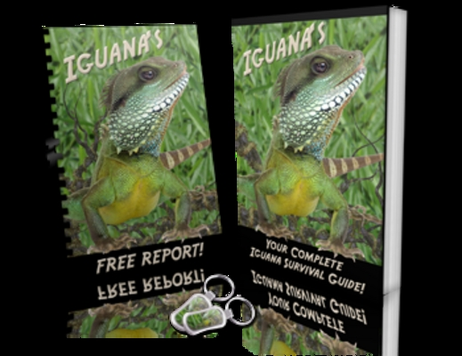 Product picture Your Complete Iguana Survival Guide